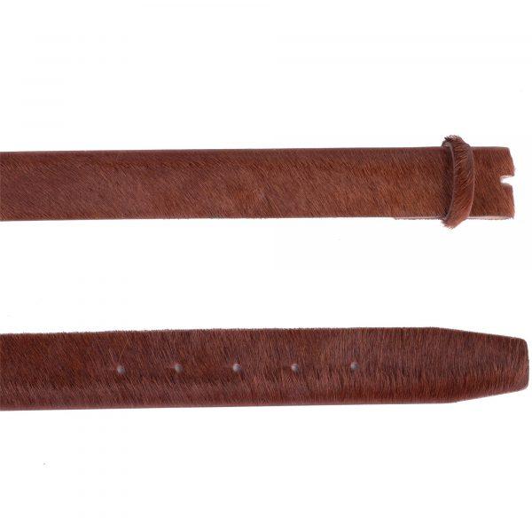 A264-004