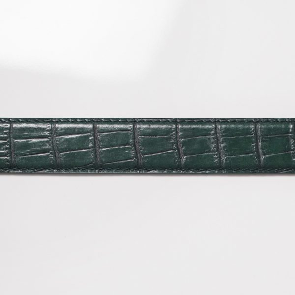 Glamotti-Guertel-A285-alge-2